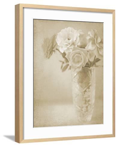 Soft Roses I-Shana Rae-Framed Art Print