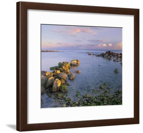 Coastal rocks, Bahia Honda Key, Florida-Tim Fitzharris-Framed Art Print