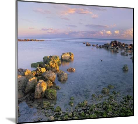 Coastal rocks, Bahia Honda Key, Florida-Tim Fitzharris-Mounted Art Print