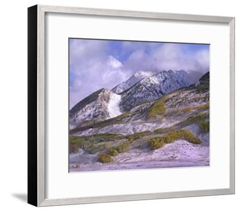 Elk Mountains with snow in autumn, Colorado-Tim Fitzharris-Framed Art Print