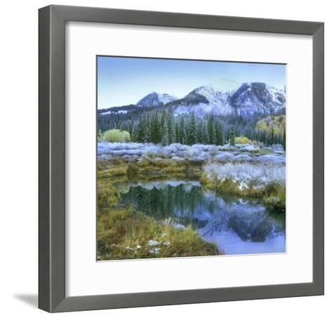 Pond and Avery Peak, San Juan Mountains, Colorado-Tim Fitzharris-Framed Art Print