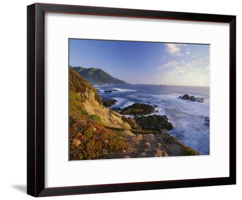 Coastline, Big Sur, Garrapata State Beach, California-Tim Fitzharris-Framed Art Print