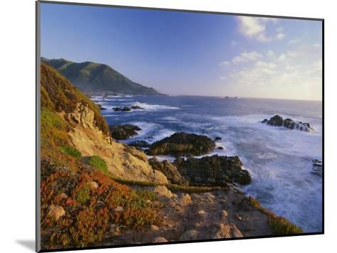 Coastline, Big Sur, Garrapata State Beach, California-Tim Fitzharris-Mounted Art Print