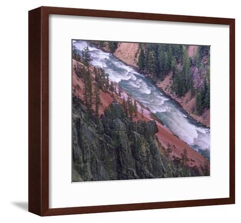 Yellowstone River, Yellowstone National Park, Wyoming-Tim Fitzharris-Framed Art Print