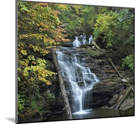 Delaware Falls, Ricketts Glen State Park, Pennsylvania-Tim Fitzharris-Mounted Art Print