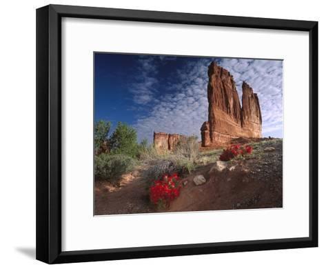 Paintbrush and the Organ Rock, Arches National Park, Utah-Tim Fitzharris-Framed Art Print