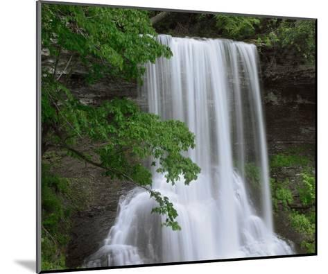 Cascading waterfall in Jefferson National Forest, Virginia-Tim Fitzharris-Mounted Art Print