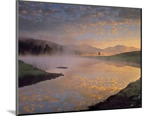Absaroka Range from Alum Creek, Yellowstone National Park, Wyoming-Tim Fitzharris-Mounted Art Print