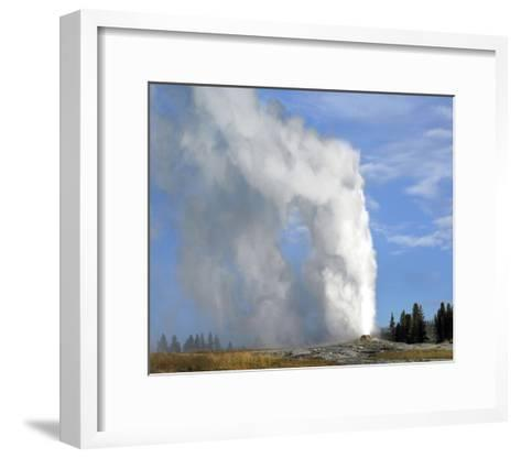 Old Faithful geyser spouting, Yellowstone National Park, Wyoming-Tim Fitzharris-Framed Art Print