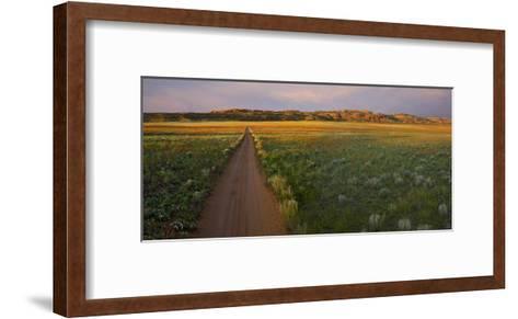 Dirt road and Globemallows Salt Valley, Arches National Park, Utah-Tim Fitzharris-Framed Art Print