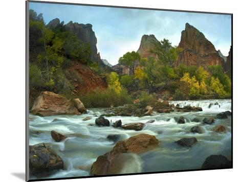 Court of the Patriarchs rising above river, Zion National Park, Utah-Tim Fitzharris-Mounted Art Print
