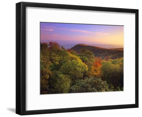 Blue Ridge Mountains with deciduous forests in autumn, North Carolina-Tim Fitzharris-Framed Art Print