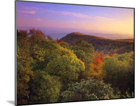 Blue Ridge Mountains with deciduous forests in autumn, North Carolina-Tim Fitzharris-Mounted Art Print