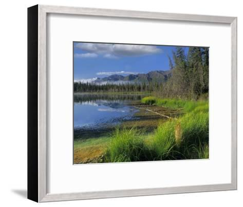 Nutzotin Mountains and boreal forest reflected in receding lake, Alaska-Tim Fitzharris-Framed Art Print