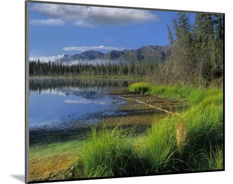 Nutzotin Mountains and boreal forest reflected in receding lake, Alaska-Tim Fitzharris-Mounted Art Print