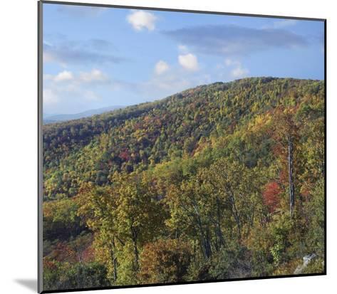 Blue Ridge Range from Moormans River Overlook, Shenandoah National Park, Virginia-Tim Fitzharris-Mounted Art Print
