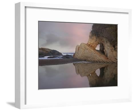Cave reflected in pool at dusk, Spooners Cove, Montano de Oro State Park, California-Tim Fitzharris-Framed Art Print