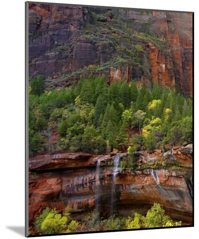 Cascades at Emerald Pools, Zion National Park, Utah-Tim Fitzharris-Mounted Art Print