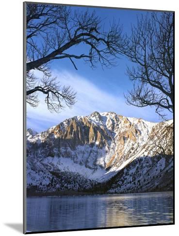 Laurel Mountain reflected in Convict Lake, eastern Sierra Nevada, California-Tim Fitzharris-Mounted Art Print