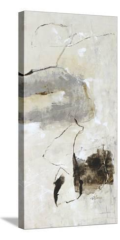 Painter Link III-Carney-Stretched Canvas Print