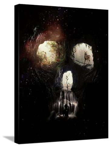 Cave-Ali Gulec-Stretched Canvas Print