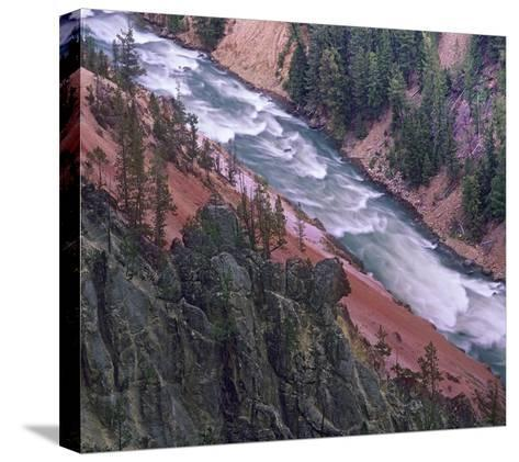 Yellowstone River, Yellowstone National Park, Wyoming-Tim Fitzharris-Stretched Canvas Print