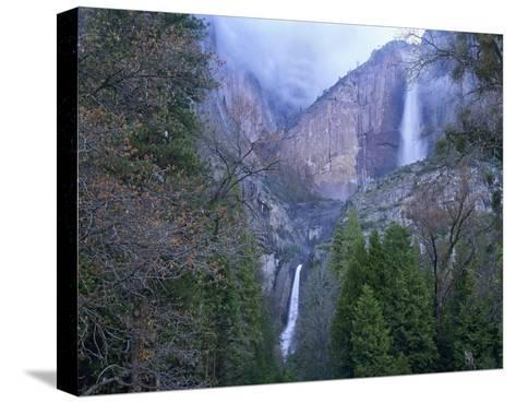 Yosemite Falls in spring, Yosemite National Park, California-Tim Fitzharris-Stretched Canvas Print