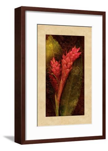 Ginger-John Seba-Framed Art Print