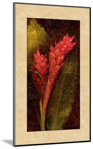 Ginger-John Seba-Mounted Giclee Print