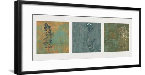 Nature Path-Chris Donovan-Framed Art Print