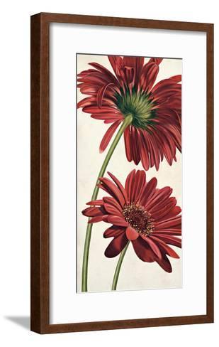 Armonie in Rosso-Eva Barberini-Framed Art Print