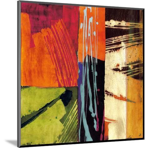 Colors II-Andy James-Mounted Giclee Print