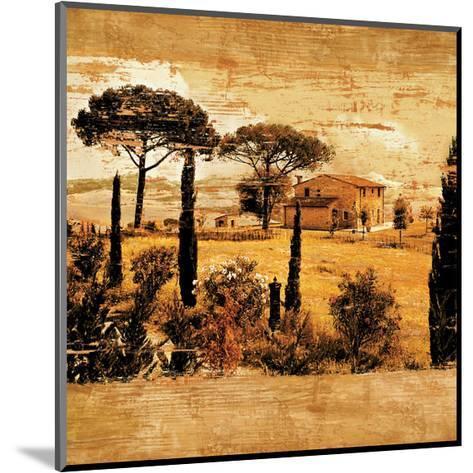 Tuscan Countryside I-Colin Floyd-Mounted Giclee Print