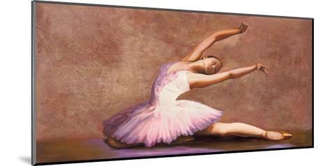 Swan Lake-Andrea Bassetti-Mounted Giclee Print