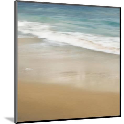 Surf and Sand I-John Seba-Mounted Giclee Print