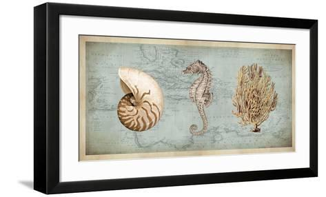 Sea Treasures I-Deborah Devellier-Framed Art Print