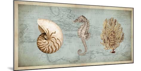 Sea Treasures I-Deborah Devellier-Mounted Giclee Print