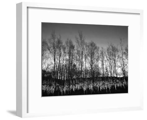 Watery Reflection-Martin Henson-Framed Art Print