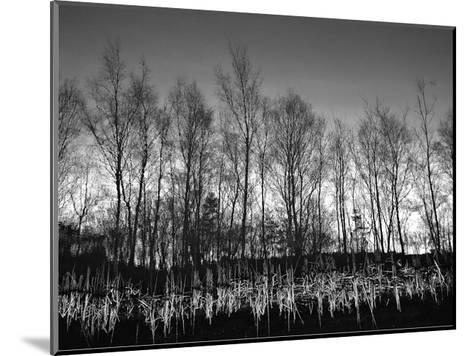Watery Reflection-Martin Henson-Mounted Art Print