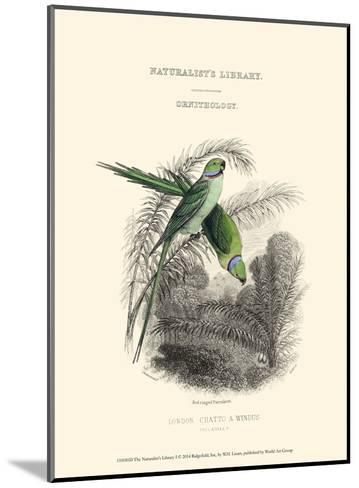 The Naturalist's Library I-W^h^ Lizars-Mounted Art Print