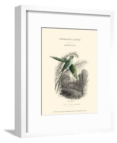 The Naturalist's Library I-W^h^ Lizars-Framed Art Print