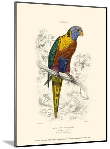 The Naturalist's Library III-W^h^ Lizars-Mounted Art Print