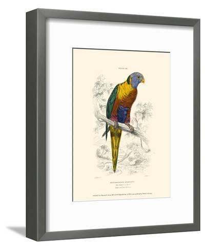 The Naturalist's Library III-W^h^ Lizars-Framed Art Print