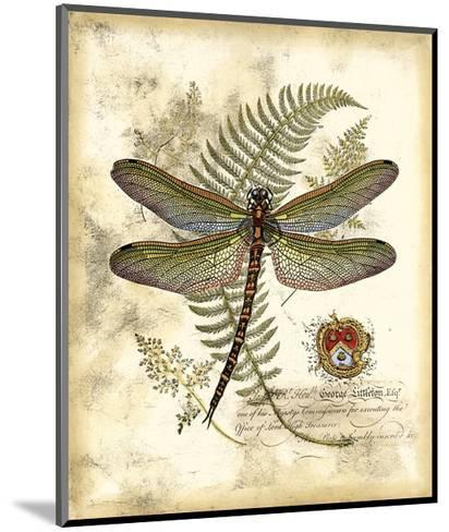 Regal Dragonfly I--Mounted Giclee Print