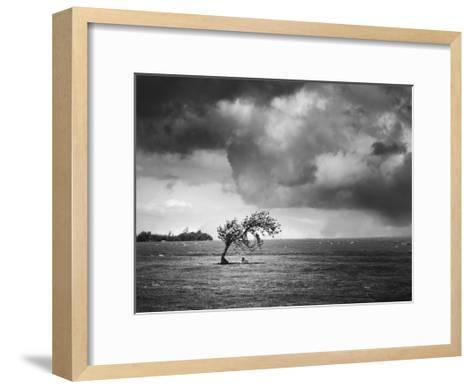 Misty Weather V-Martin Henson-Framed Art Print