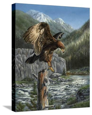 Golden Glory-Carolyn Mock-Stretched Canvas Print