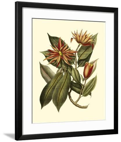Magnificent Foliage I--Framed Art Print