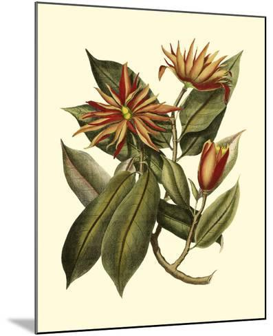 Magnificent Foliage I--Mounted Giclee Print