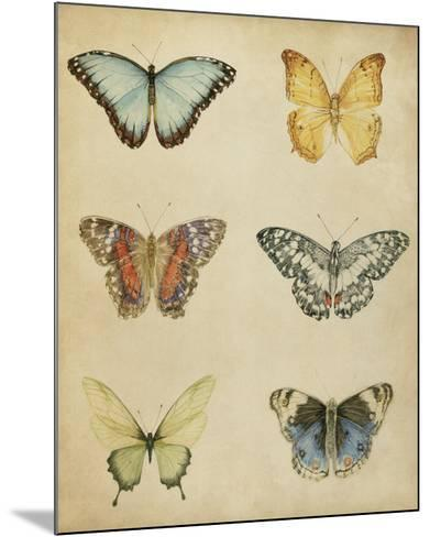 Butterfly Varietal I-Megan Meagher-Mounted Giclee Print