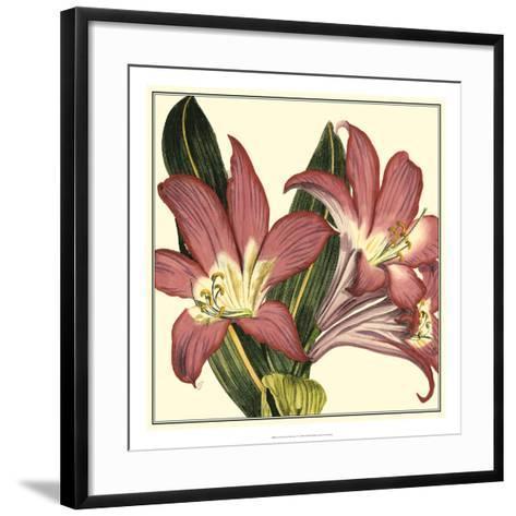 Poetic Blossoms IV--Framed Art Print